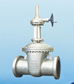 Gate Valve products, series number CA-G010